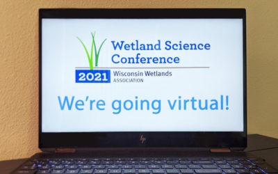 2021 Conference announcement: Wetlands go virtual!