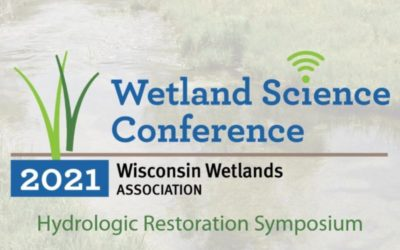 2021 Conference Symposium: It's All About the Water