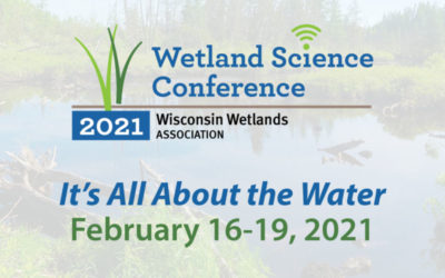 Top 10 reasons to register for the virtual Wetland Science Conference